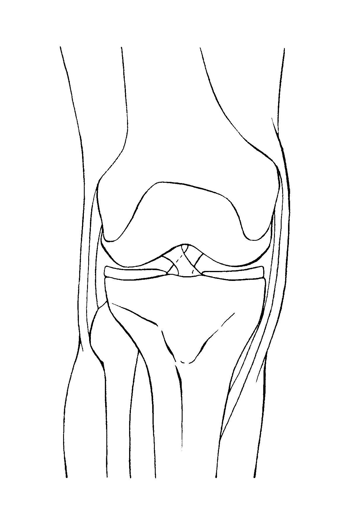 膝関節・てあて整体スクール