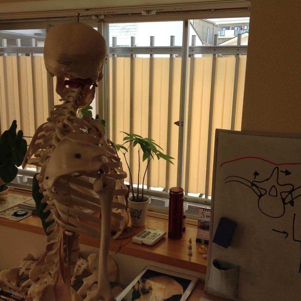 骨格調整専科4・てあて整体スクール