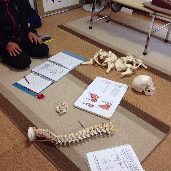 解剖学授業・てあて整体スクール