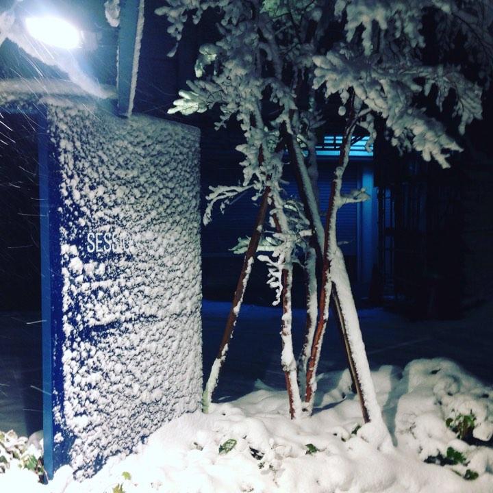 雪のセッション・てあて整体スクール