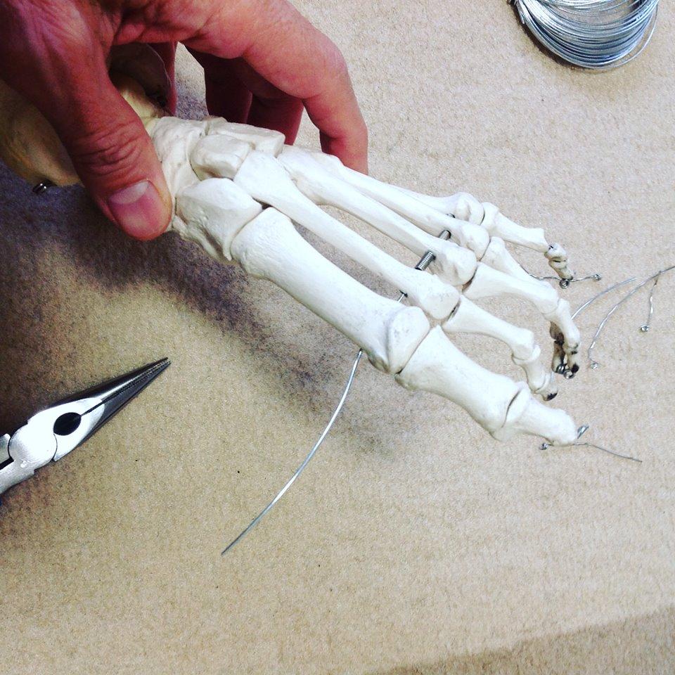 骨格模型修理3
