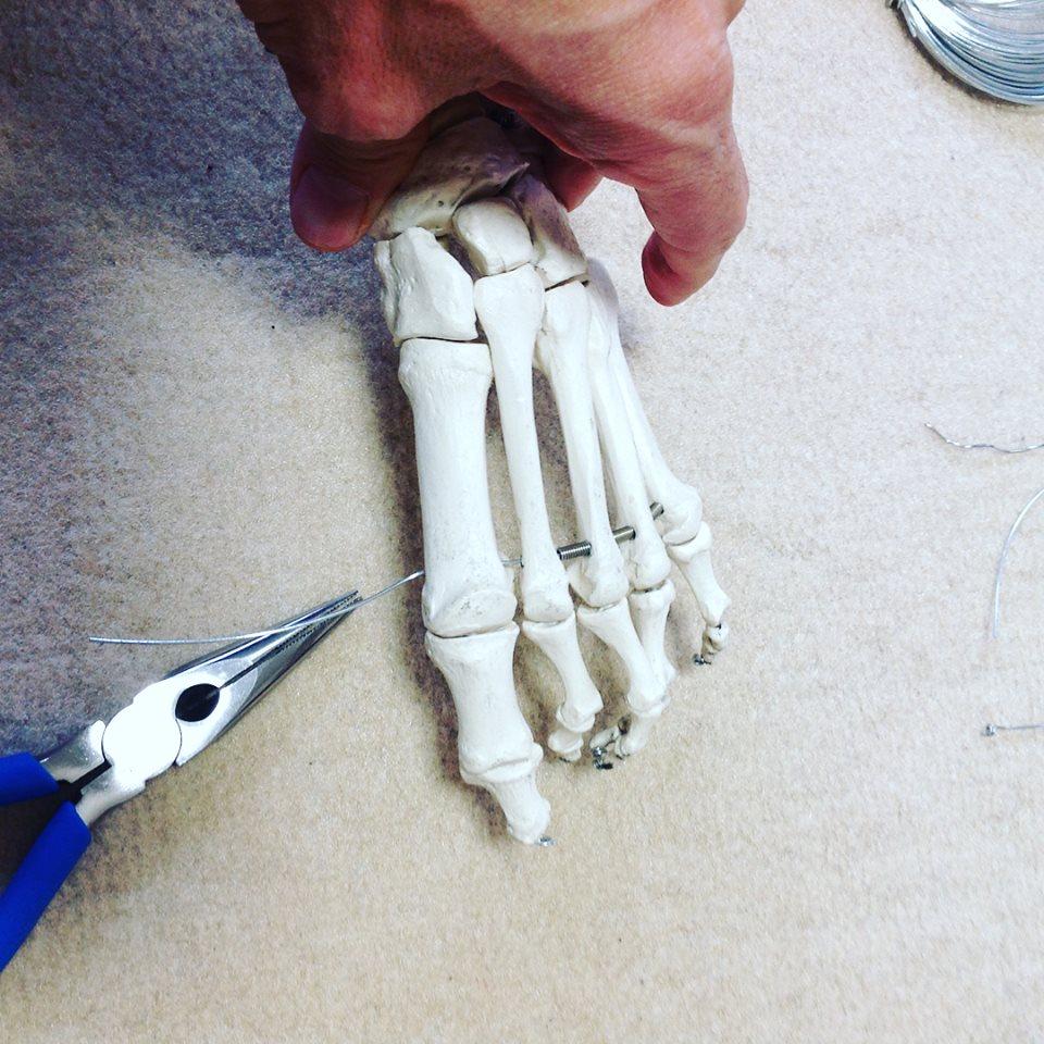 骨格模型修理4